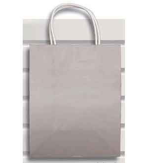 Gift Bag (XS) Silver