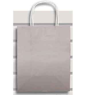 Gift Bag (M) Silver